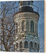 Old Fort Niagara Lighthouse 4484 Wood Print
