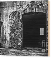 Old Fort Passway Wood Print