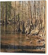 Old Growth Wood Print