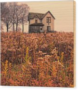 Old House In Weeds Wood Print