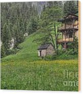 Old House On The Green Field Wood Print
