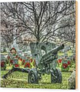 Old Howitzer Wood Print