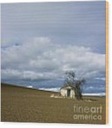 Old Hut. Auvergne. France Wood Print by Bernard Jaubert