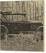 Old Jalopy Behind The Barn Wood Print