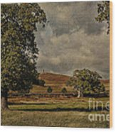 Old John Bradgate Park Leicestershire Wood Print by John Edwards