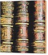 Old Ledgers Wood Print