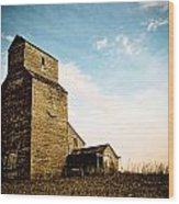 Old Lepine Elevator Wood Print by Gerald Murray Photography