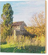 Old Little Stones House In Provence Wood Print