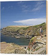 Old Lizard Head And Polpeor Cove Wood Print