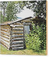Old Log Homestead IIi Wood Print