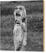 Old Man Gnome Wood Print