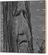 Old Man River Wood Print