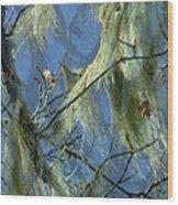 Old Man's Beard Maple Wood Print