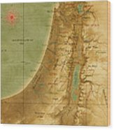 Old Map Of The Holy Land Wood Print