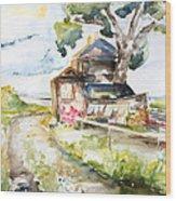 Old Mecklenburg Rail Station Nossentin Wood Print