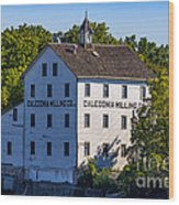 Old Mill In Caledonia Ontario Wood Print