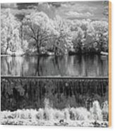 Old Mill Pond In Infrared Wood Print