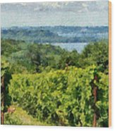 Old Mission Peninsula Vineyard Wood Print