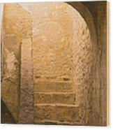 San Antonio Texas Concepcion Mission Stairs Wood Print