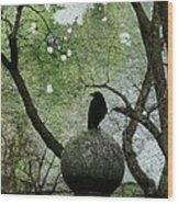 Old Moss Wood Print