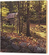 Old Mountain Shed Wood Print by Paul W Faust -  Impressions of Light