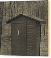 Old Outhouse Out Back Wood Print