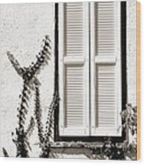 Old Painted Shutter 2 Wood Print