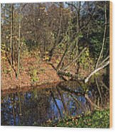 Old Park Canal In Autumn Wood Print