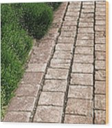Old Pavers Alley Wood Print by Olivier Le Queinec