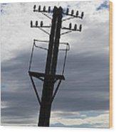 Old Power Pole Wood Print