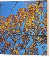 Old Rag Hiking Trail - 121218 Wood Print