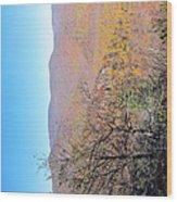 Old Rag Hiking Trail - 121223 Wood Print