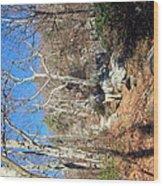 Old Rag Hiking Trail - 121246 Wood Print