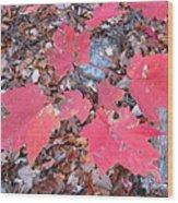 Old Rag Hiking Trail - 121260 Wood Print