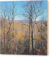 Old Rag Hiking Trail - 12128 Wood Print