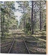 Old Railroad Tracks Wood Print