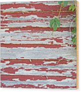 Old Red Barn With Peeling Paint And Vines Wood Print