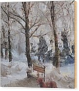 Old Red Playing In The Snow  Wood Print