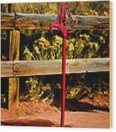 Old Red Pump Wood Print