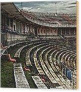 Old Ruined Stadium Wood Print