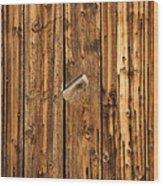 Old Shed Door Wood Print