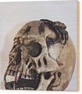 Old Skull With Scorpion On A White Background Wood Print