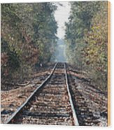 Old Southern Tracks Wood Print