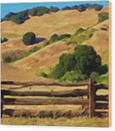 Old Split Rail Fence Wood Print by Michael Pickett