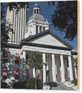 Old State Capitol - Florida Wood Print