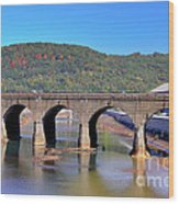 Old Stone Bridge - Johnstown Pa Wood Print