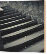 Old Stone Stairway Wood Print
