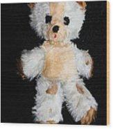 Old Teddy Bear Pepi Wood Print