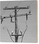 Old Telephone Pole Wood Print