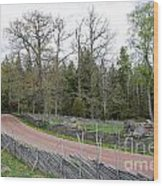 Old Time Gravel Road Wood Print